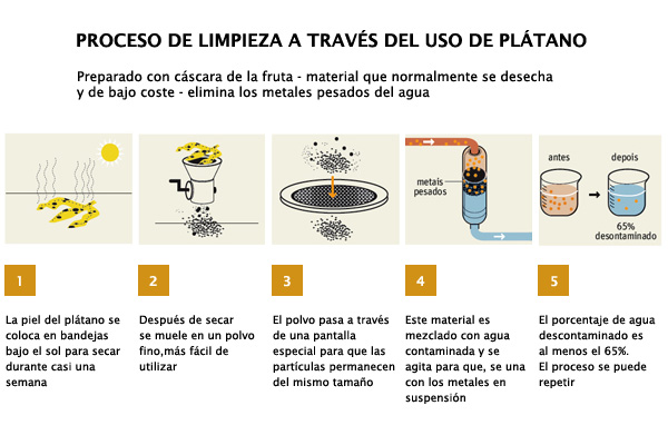 C mo limpiar agua contaminada con c scaras de banana for Manual de limpieza y desinfeccion para una cocina
